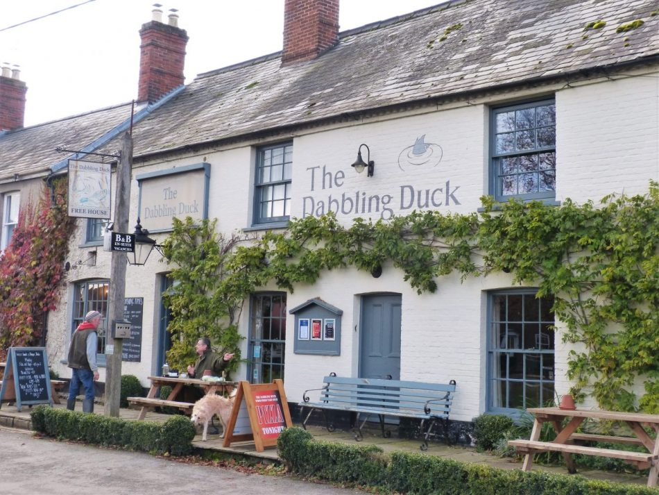 Enjoy a meal at the Dabbling Duck