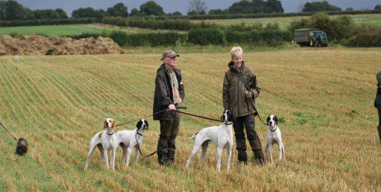 Field trials in Norfolk